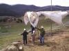 windmills 009.jpg